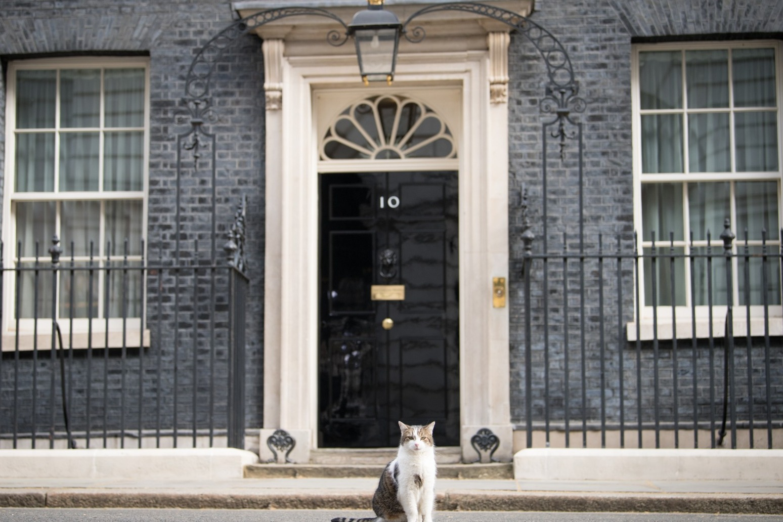The Electoral Commission has announced it will investigate the refurbishment of Boris Johnsons Downing Street flat thumbnail