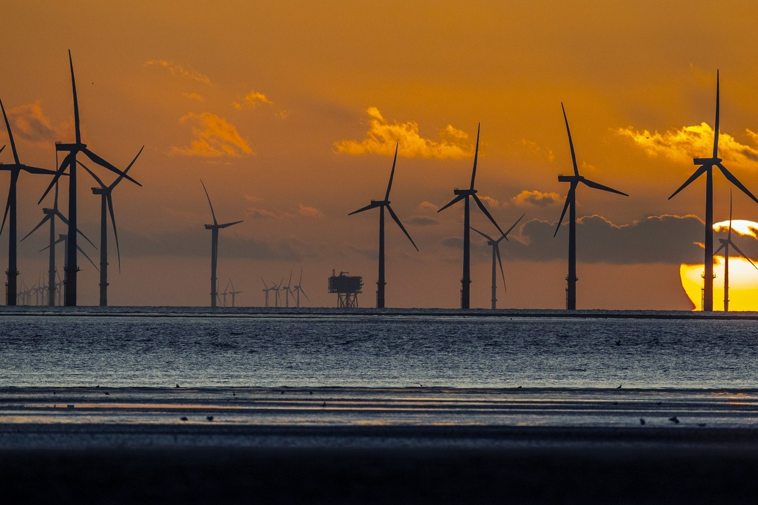 Government 'almost' at point of no longer subsiding wind farms