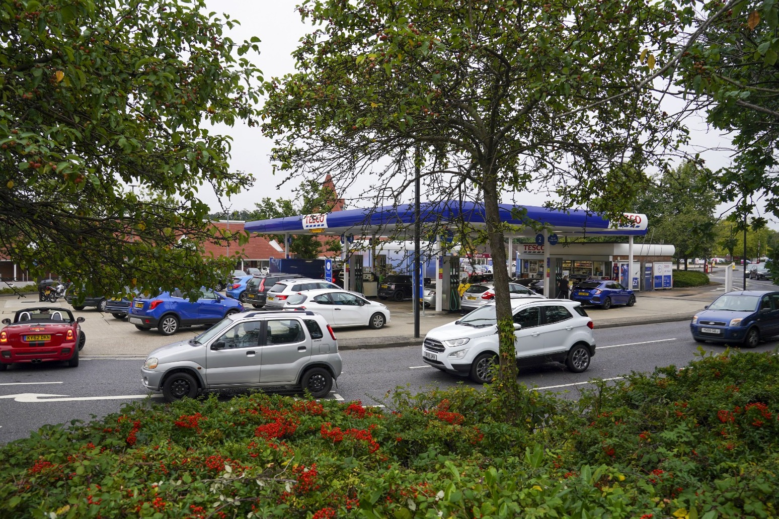 Panic-buying causing fuel shortages, not supply chain issues, AA head says