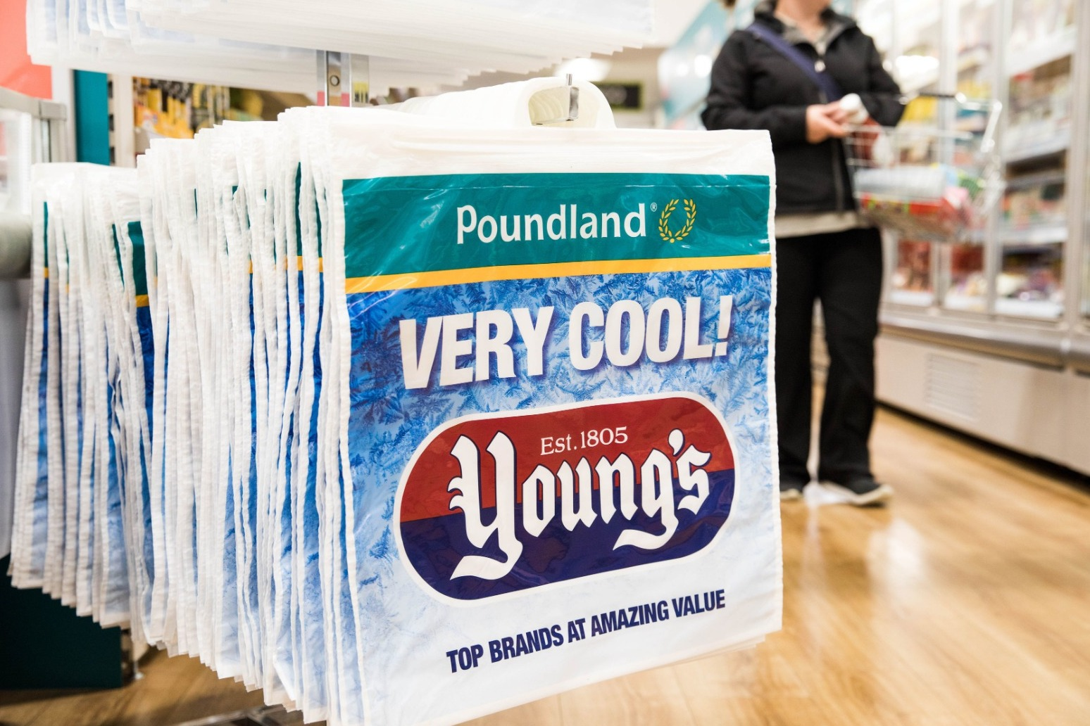Poundland to sell chilled and frozen foods