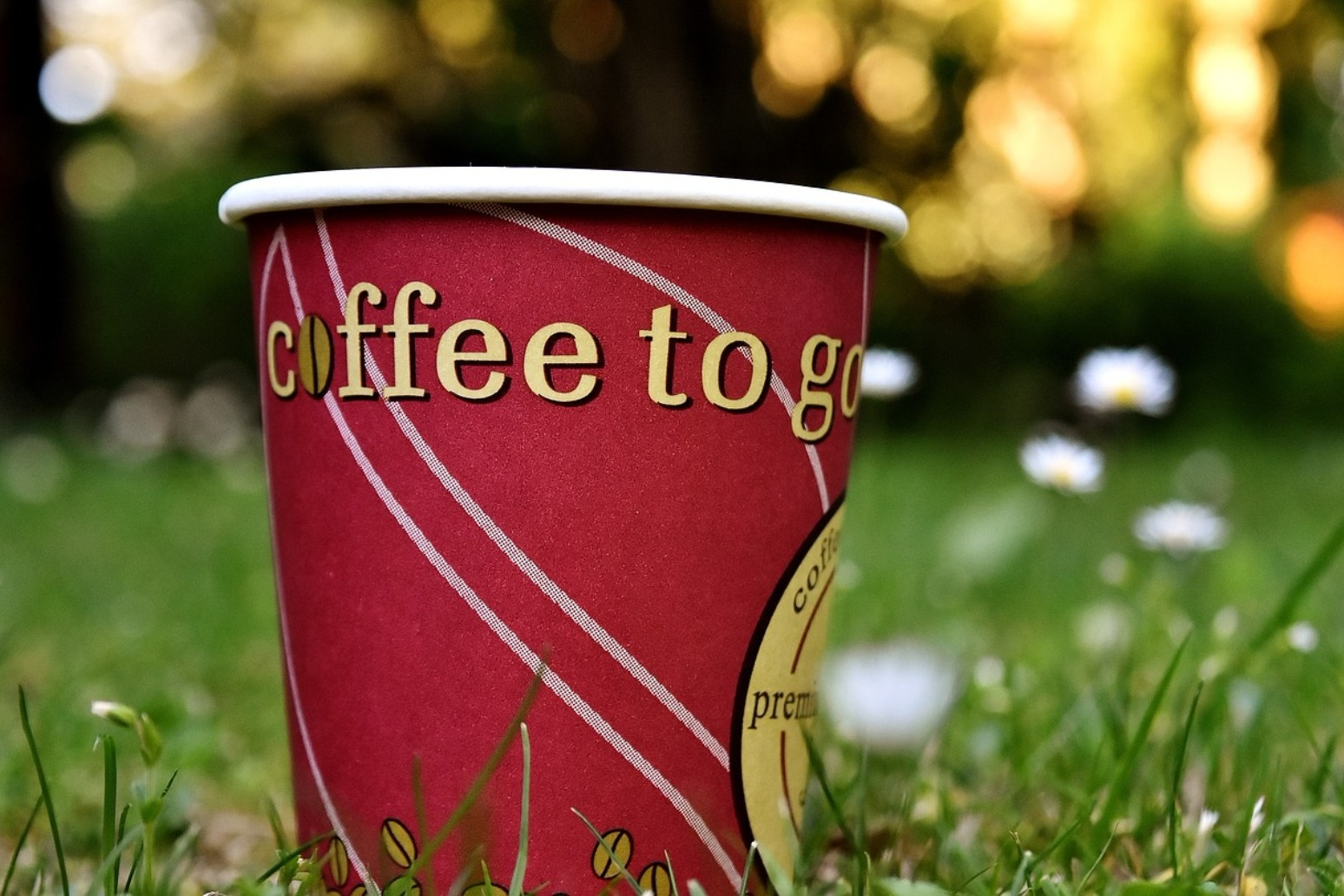 Calls for a \'latte levy\' to be added to paper coffee cups