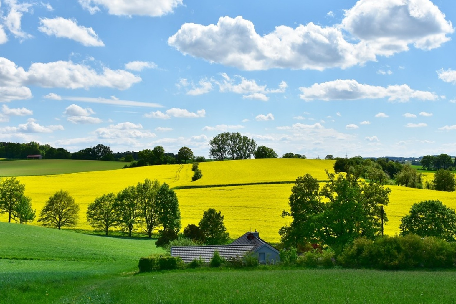 People in rural areas to be left behind post Brexit