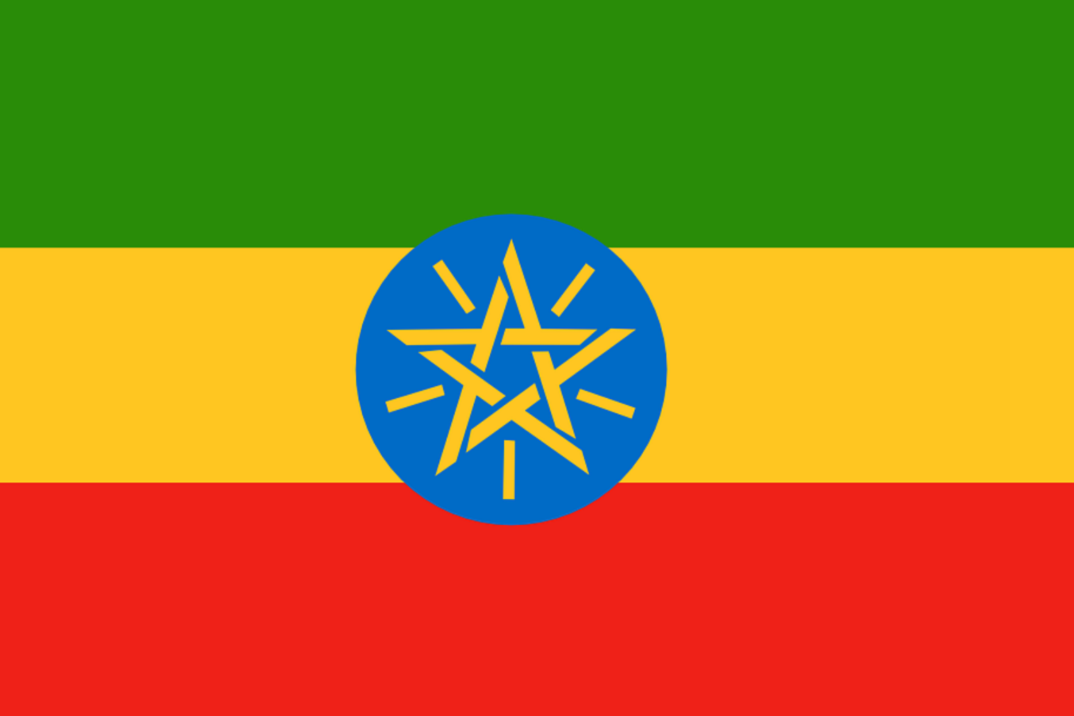 Ethiopia\'s chief of staff killed in coup attempt in Amhara state