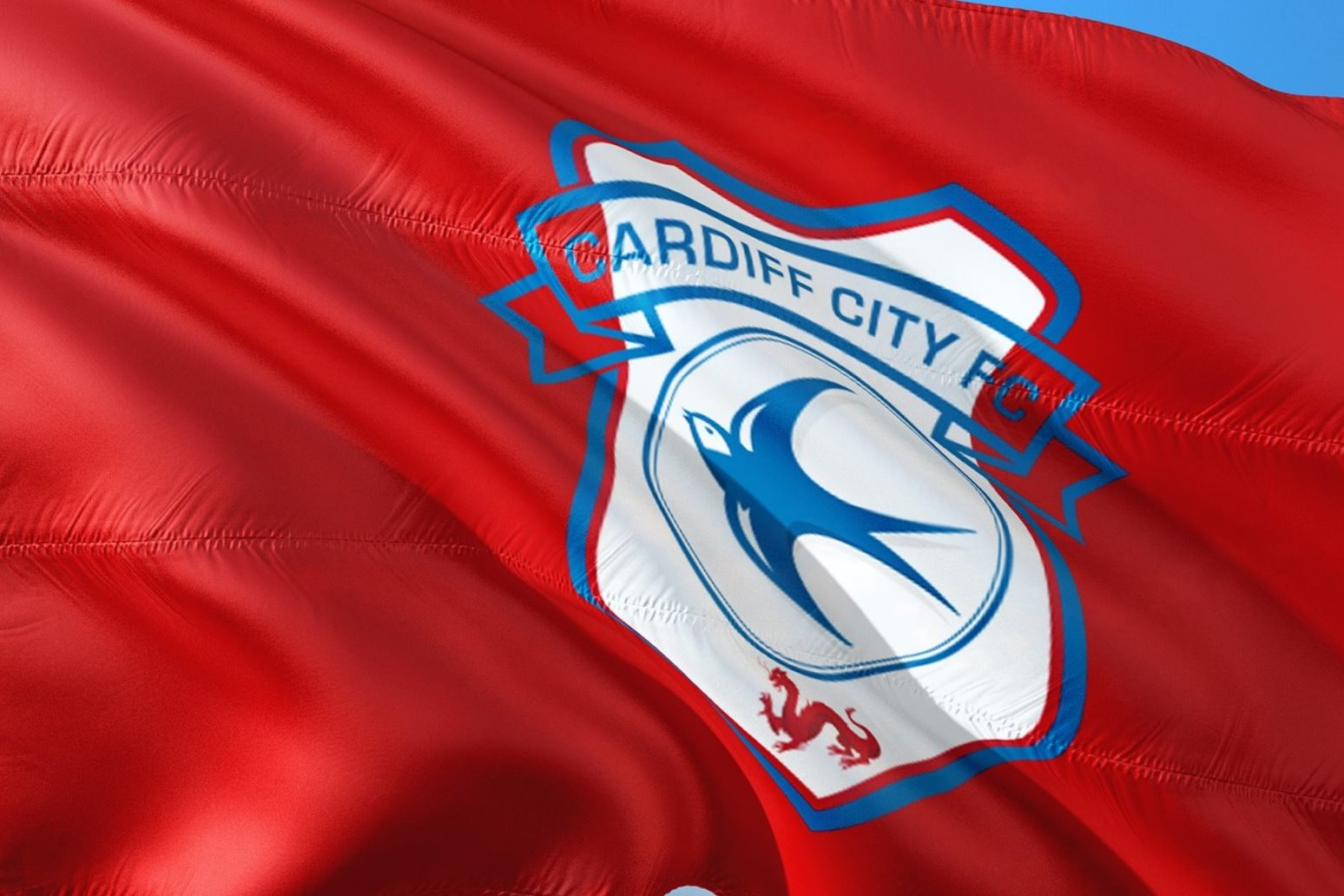 Fears for new Cardiff signing after plane goes missing