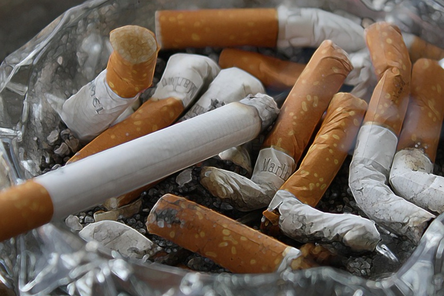 At least three out of five people who try a cigarette become daily smokers